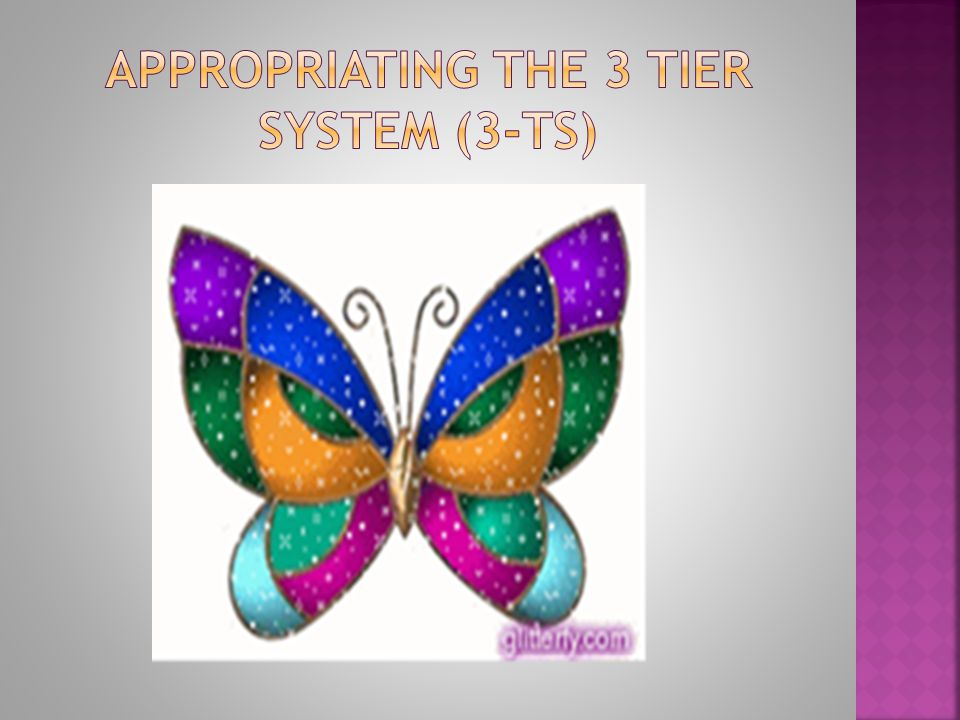 Appropriating The 3 Tier System (3-TS)