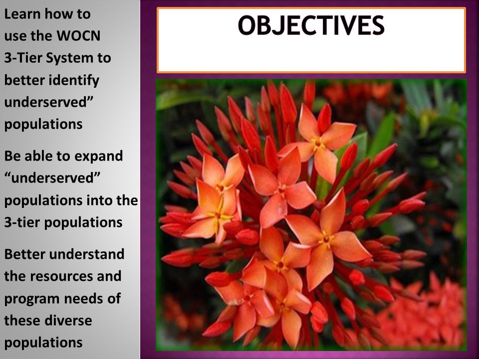 Objectives Learn how to use the WOCN