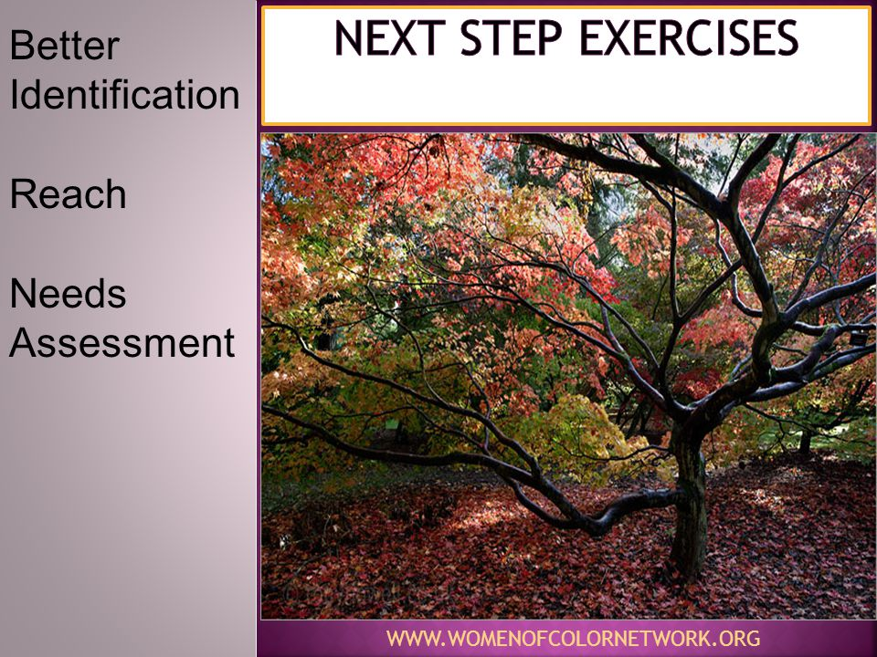 Next STEP EXERCISES Better Identification Reach Needs Assessment