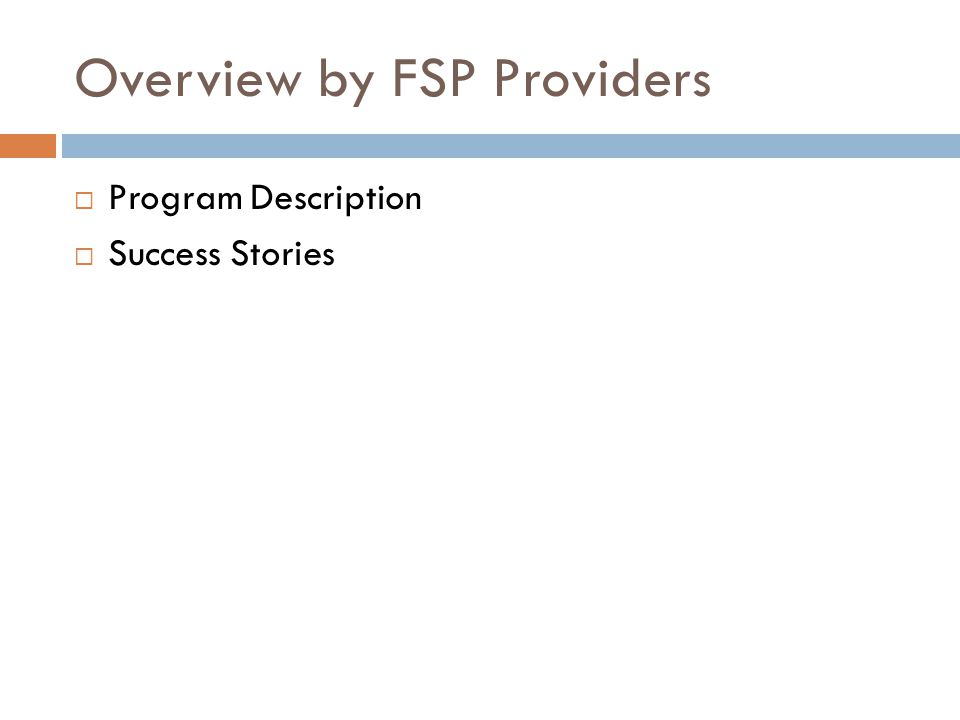 Overview by FSP Providers