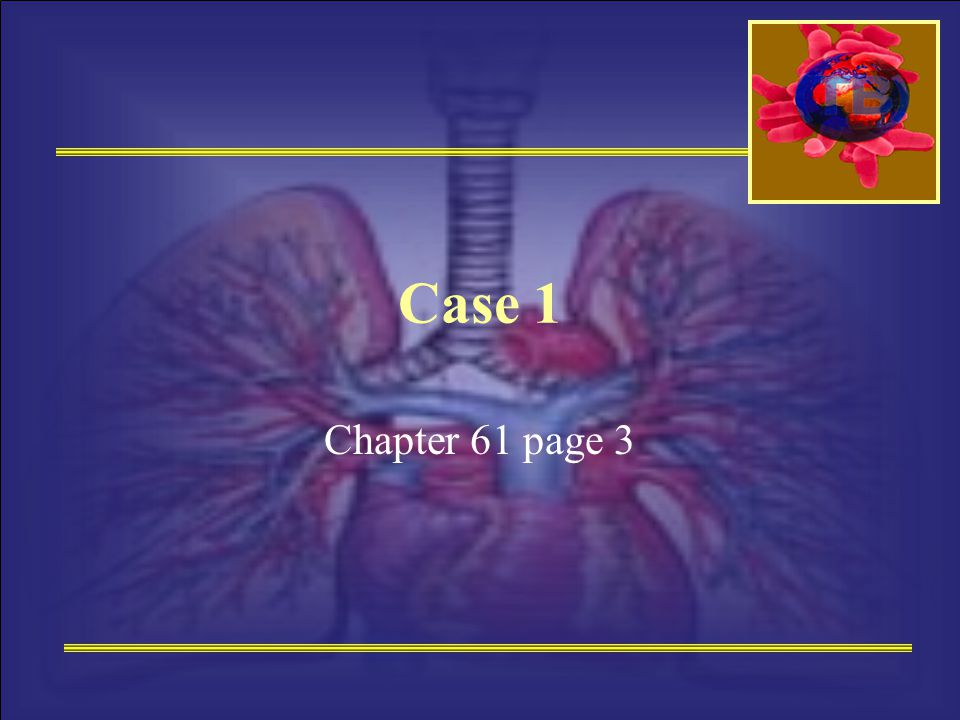 Case 1 Chapter 61 page 3