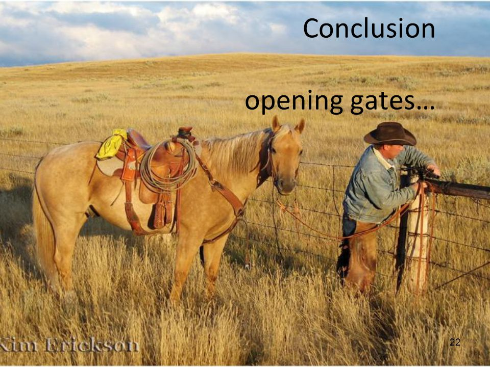 Conclusion opening gates…