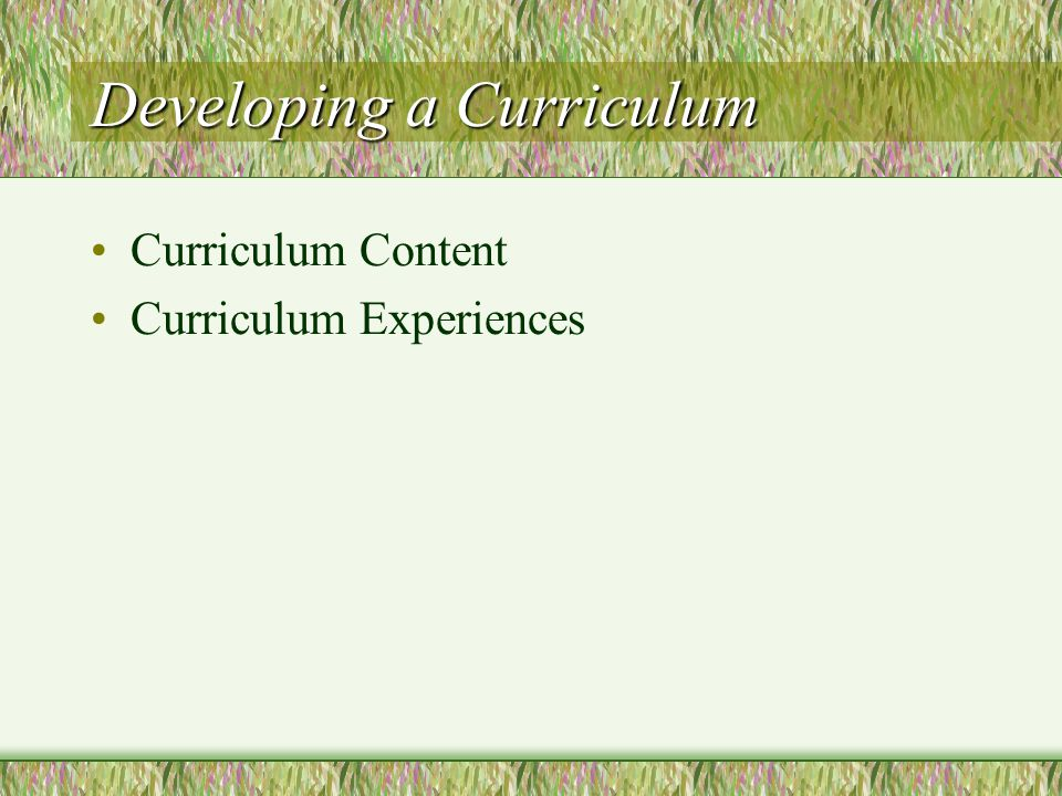 Developing a Curriculum