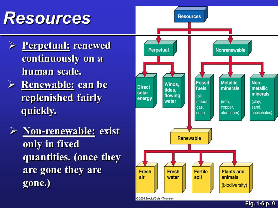 Resources Perpetual: renewed continuously on a human scale.