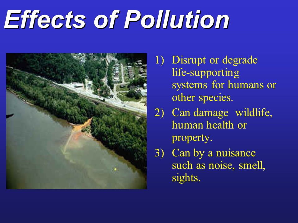 Effects of Pollution Disrupt or degrade life-supporting systems for humans or other species. Can damage wildlife, human health or property.