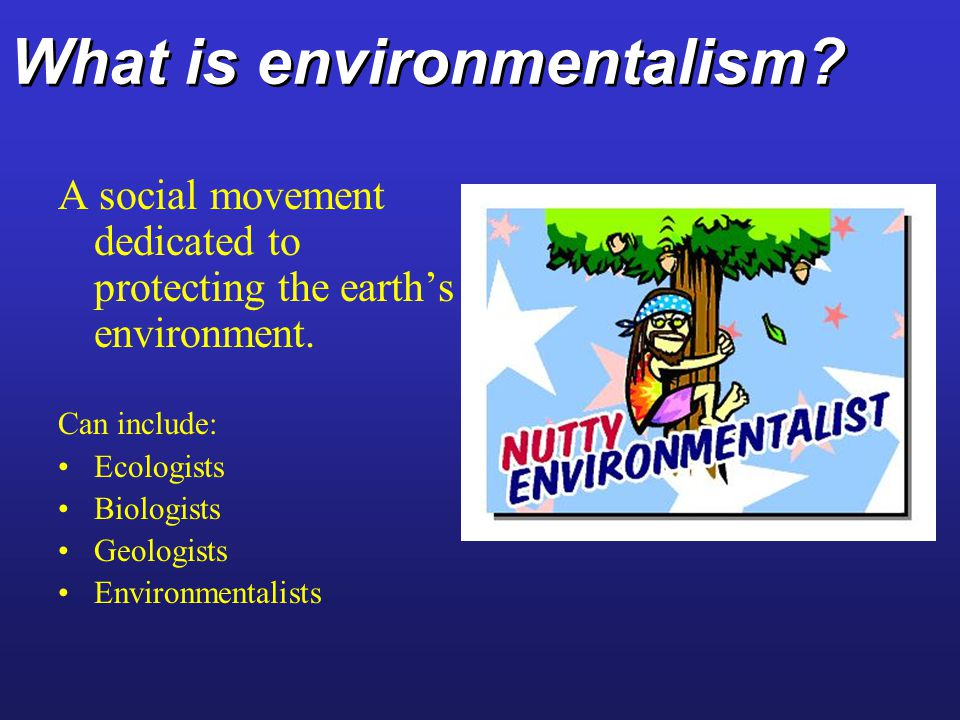 What is environmentalism