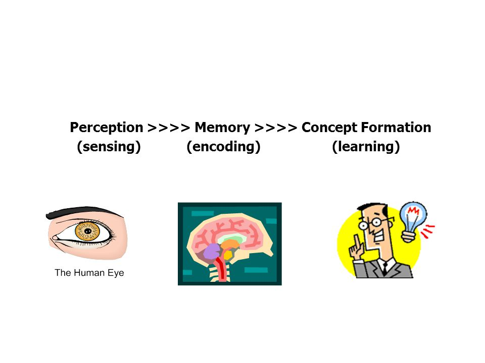 Perception >>>> Memory >>>> Concept Formation