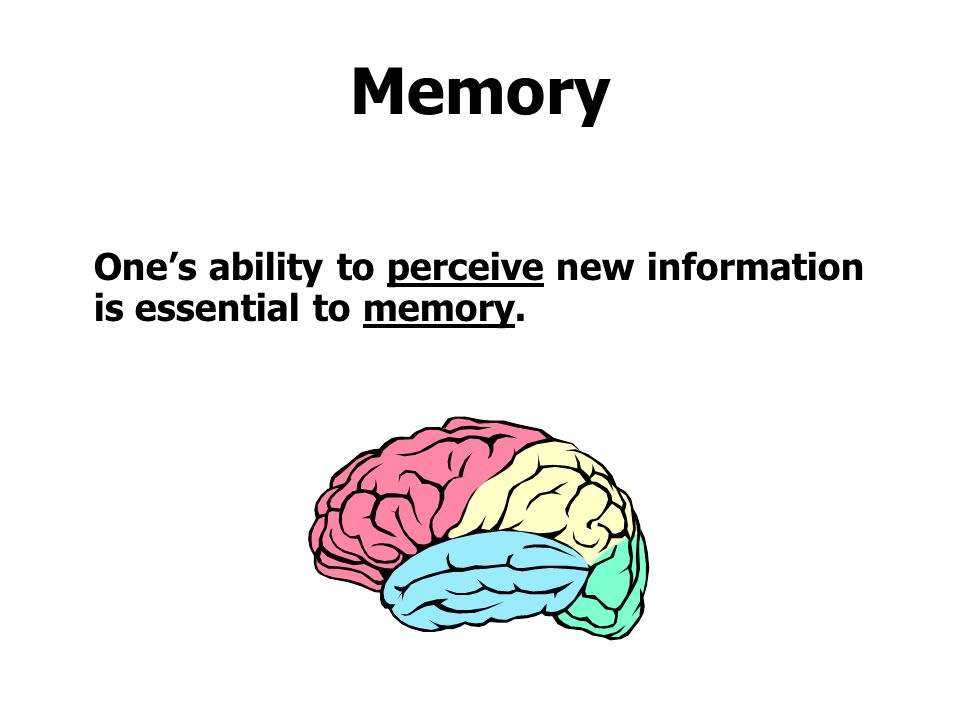 Memory One's ability to perceive new information is essential to memory.