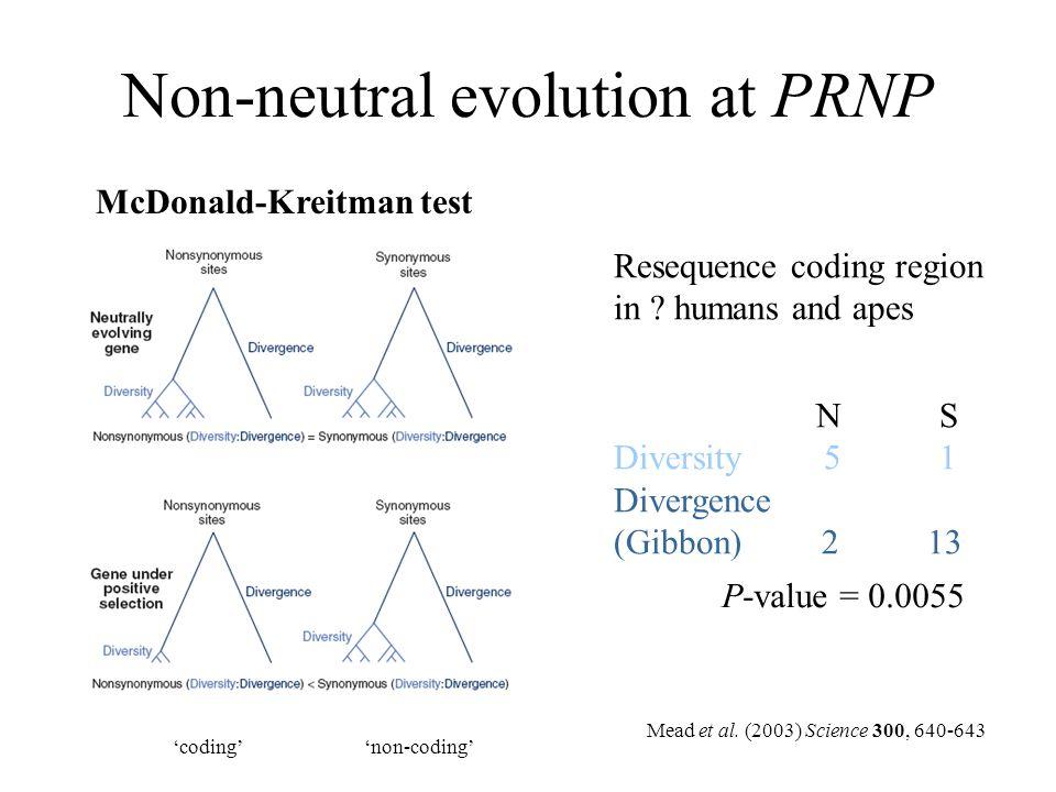 Non-neutral evolution at PRNP