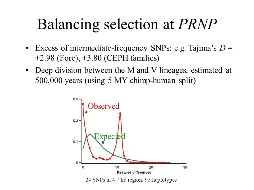 Balancing selection at PRNP