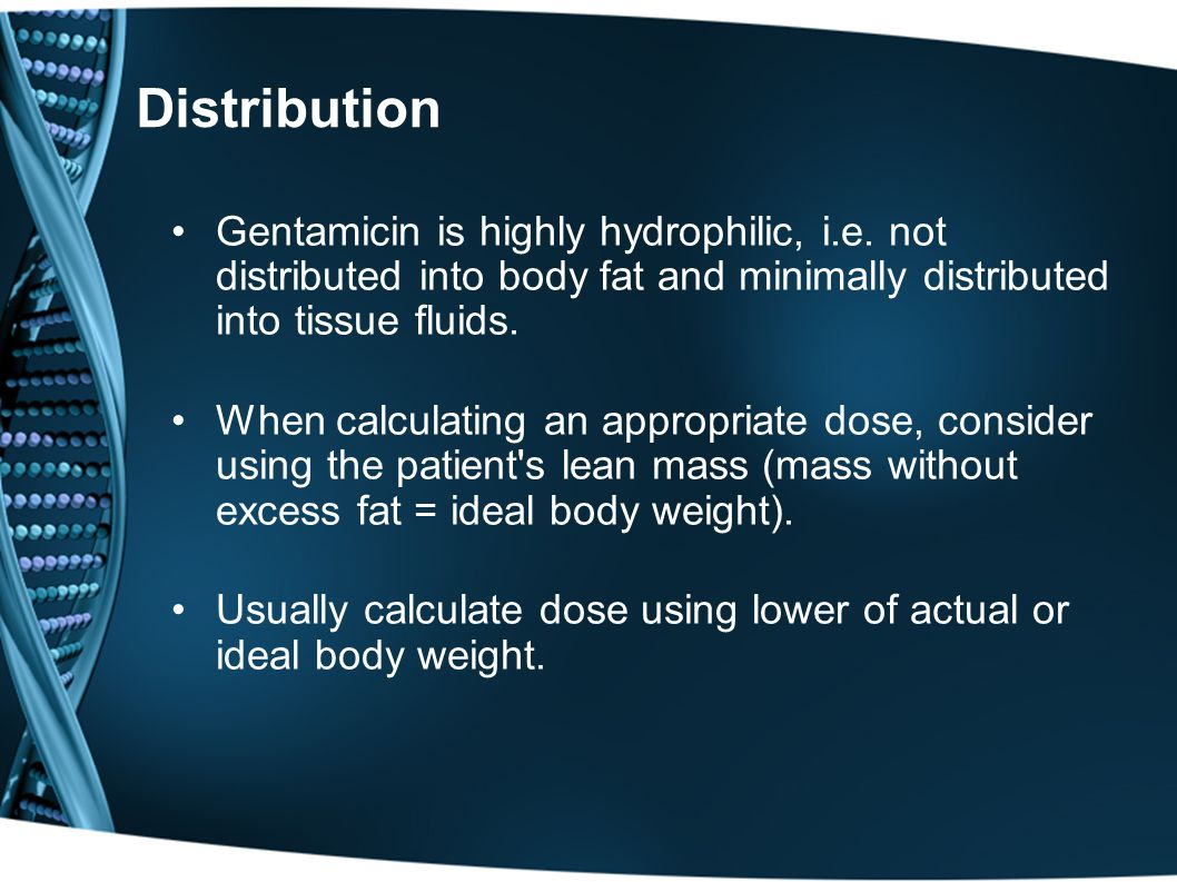 Distribution Gentamicin is highly hydrophilic, i.e. not distributed into body fat and minimally distributed into tissue fluids.