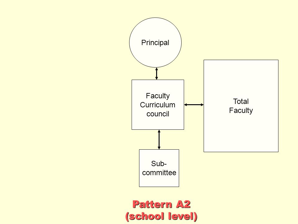 Pattern A2 (school level) Principal Total Faculty Faculty Curriculum
