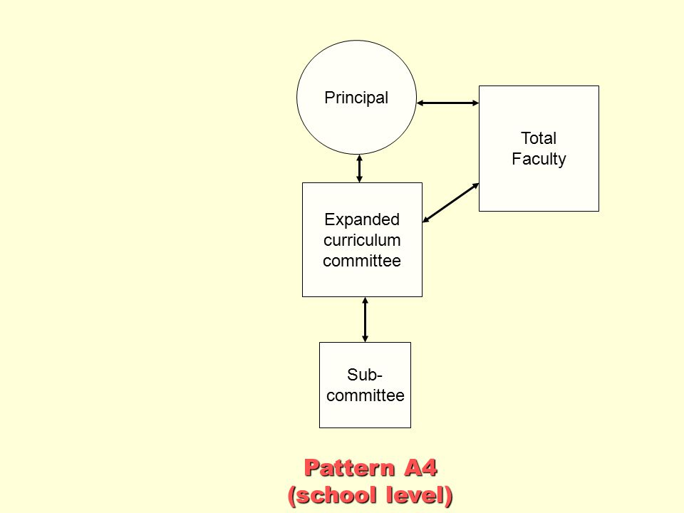 Pattern A4 (school level) Principal Total Faculty Expanded curriculum