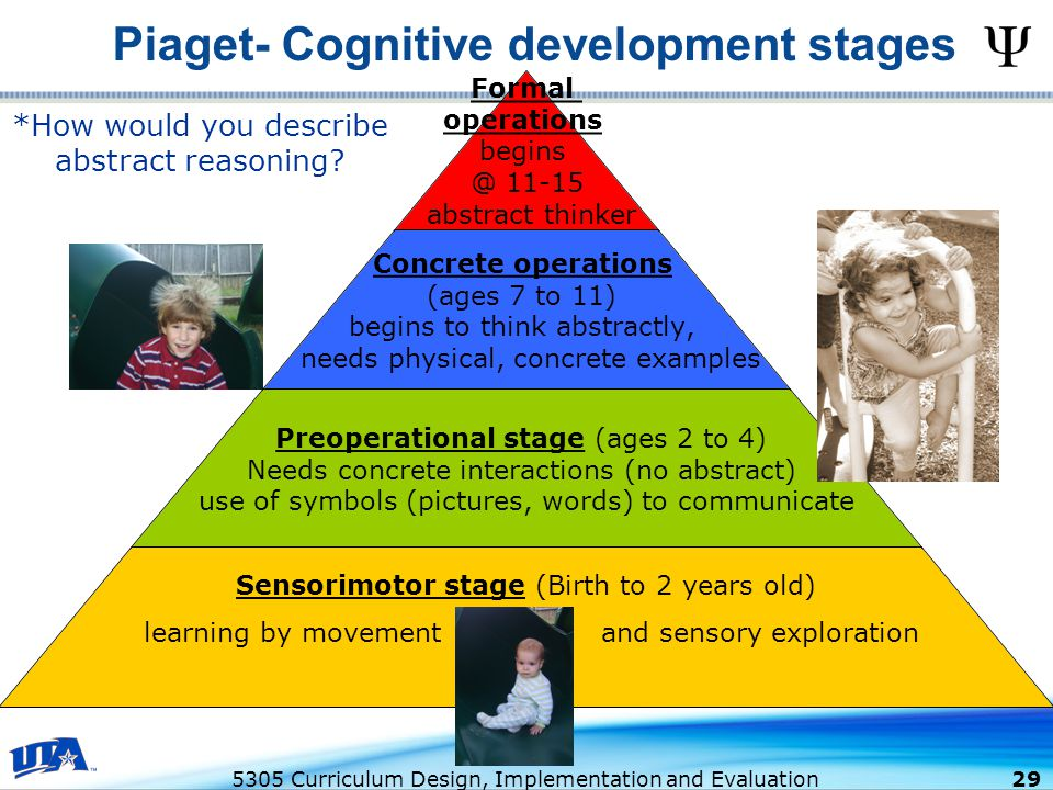 Piaget- Cognitive development stages