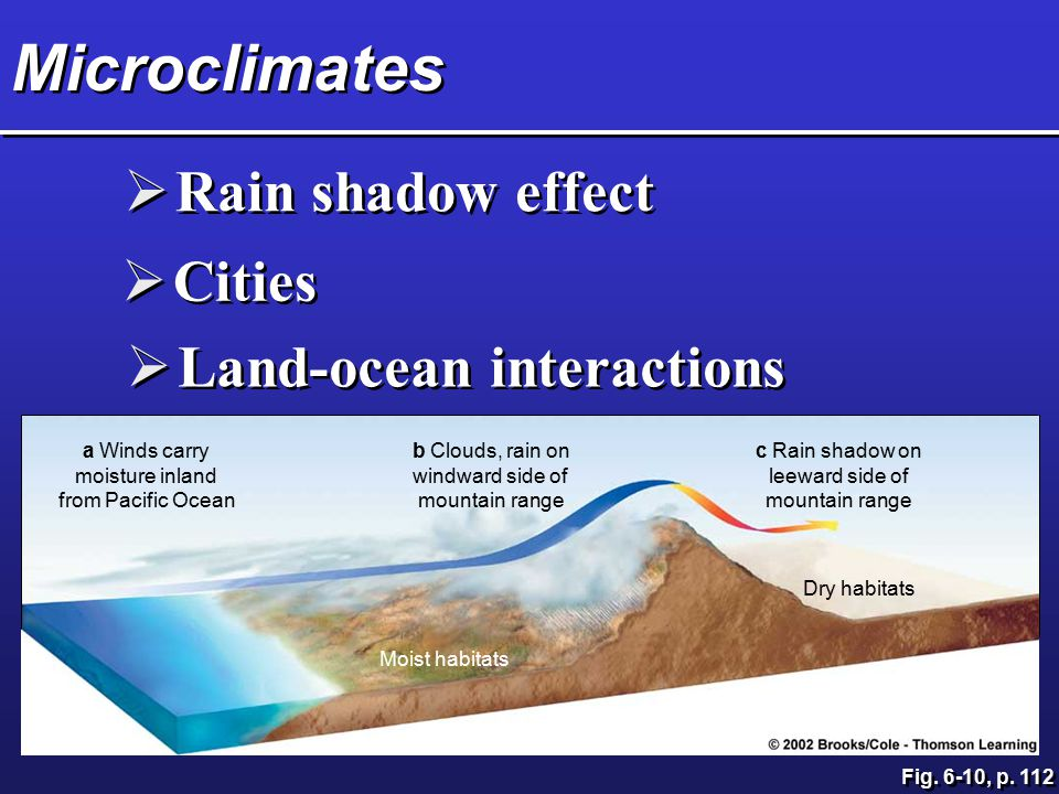Microclimates Rain shadow effect Cities Land-ocean interactions