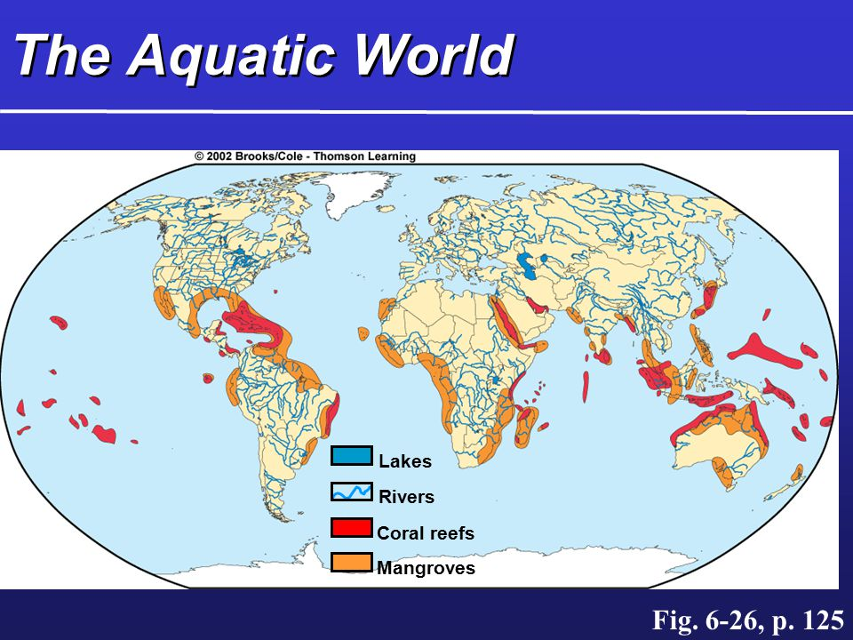 The Aquatic World Mangroves Coral reefs Rivers Lakes Fig. 6-26, p. 125