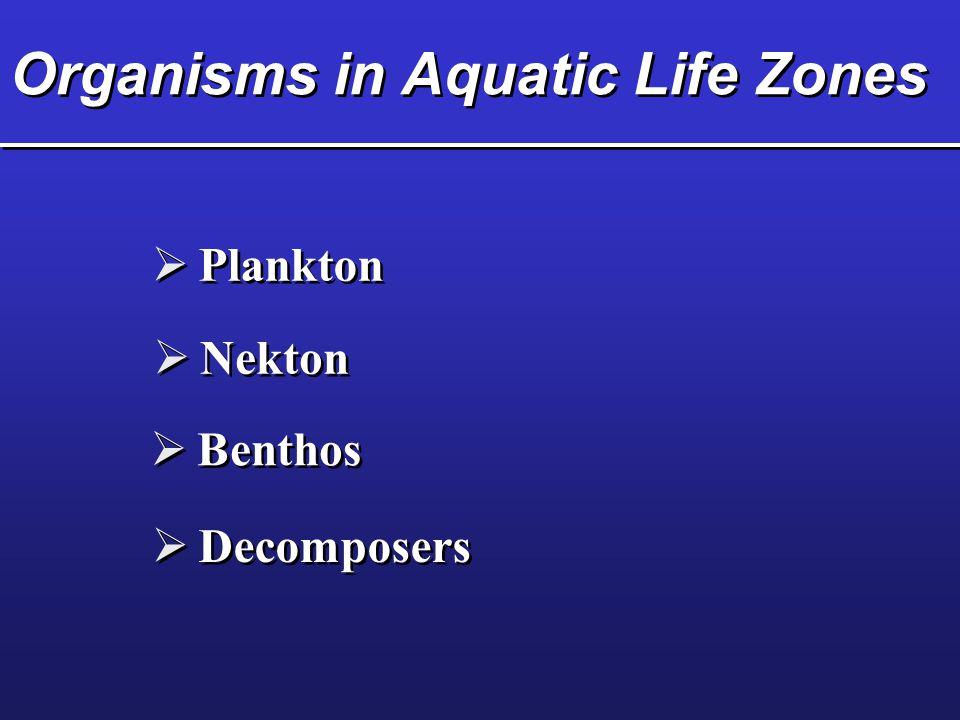 Organisms in Aquatic Life Zones