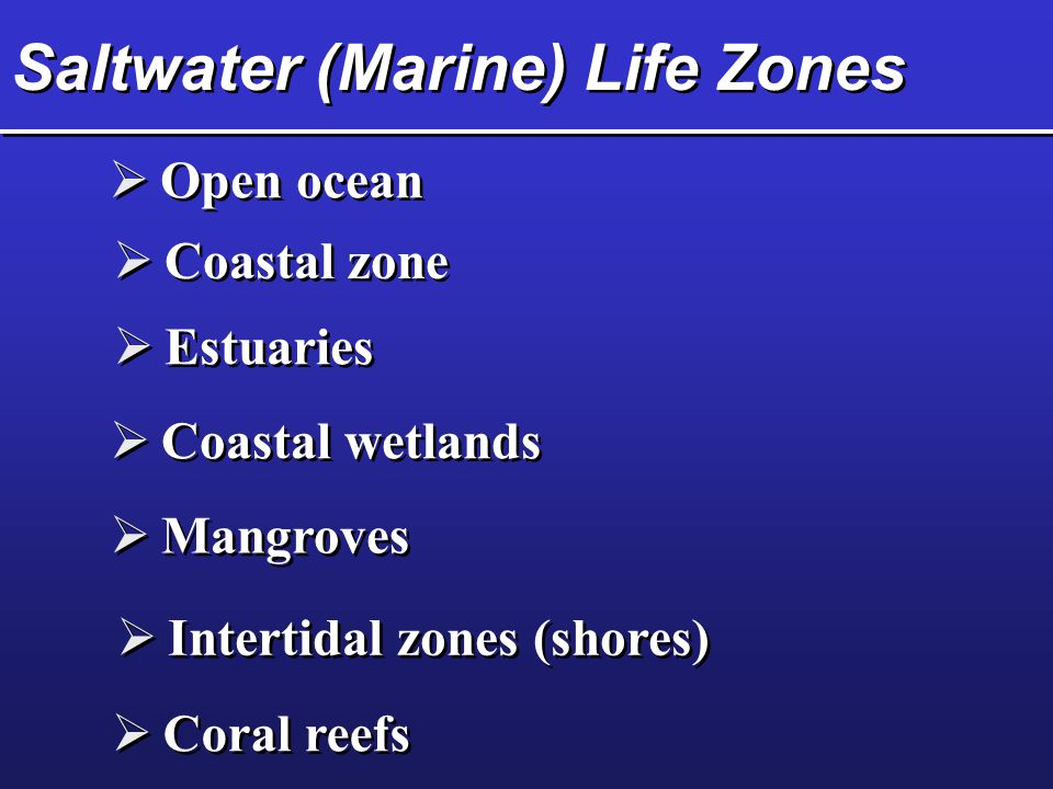 Saltwater (Marine) Life Zones
