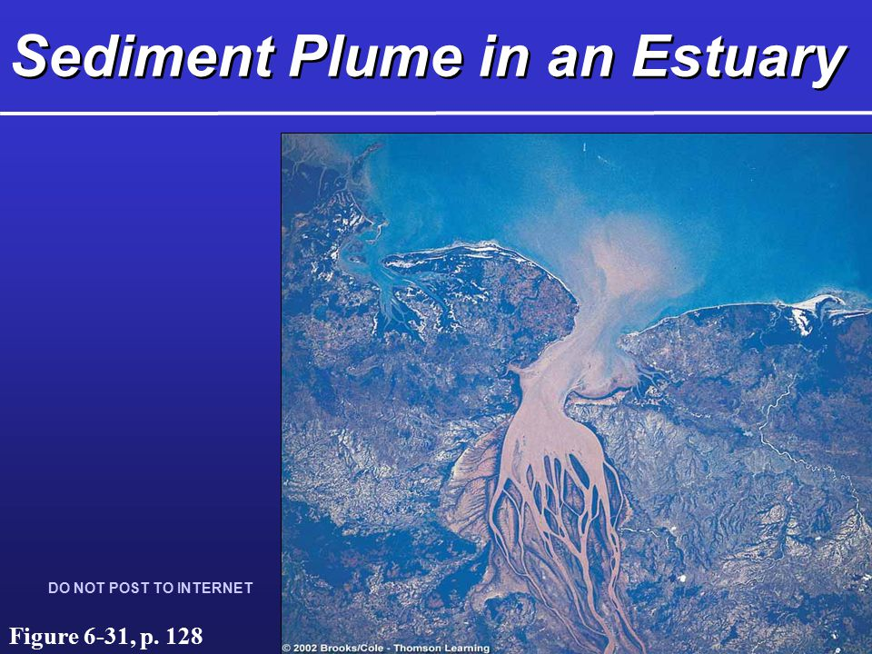 Sediment Plume in an Estuary