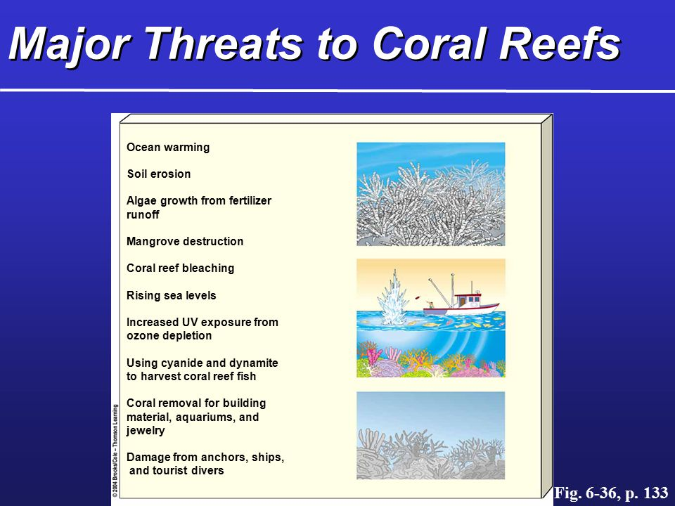 Major Threats to Coral Reefs