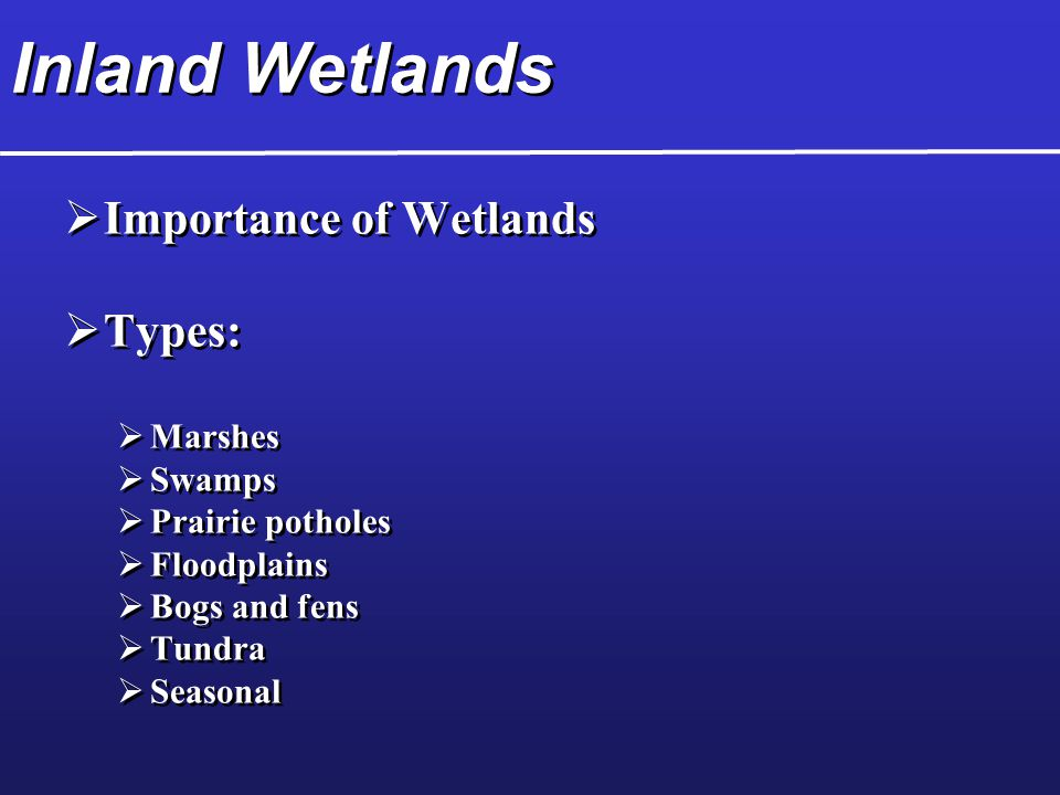 Inland Wetlands Importance of Wetlands Types: Marshes Swamps