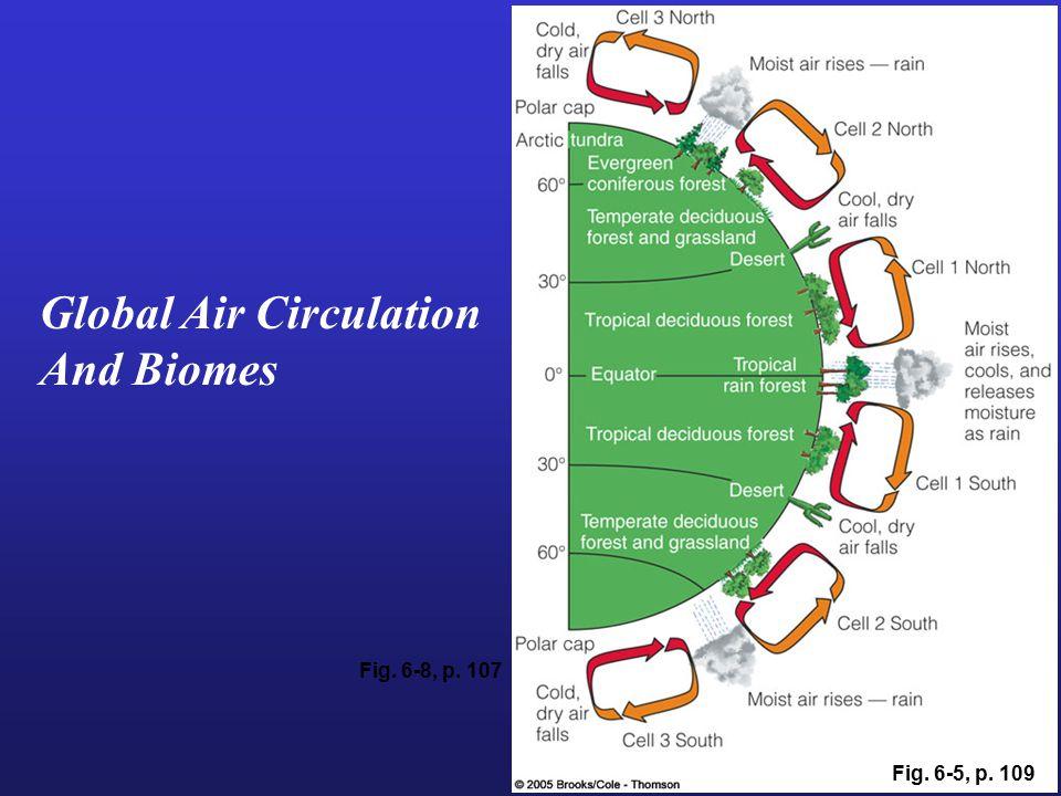 Global Air Circulation And Biomes