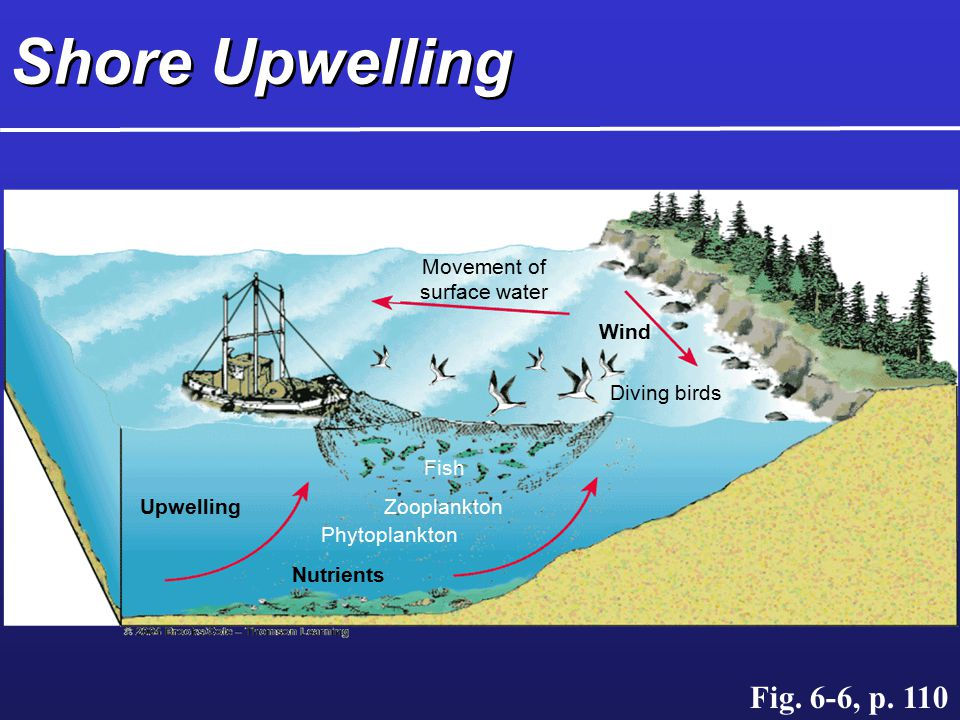 Shore Upwelling Fig. 6-6, p. 110 Wind Movement of surface water
