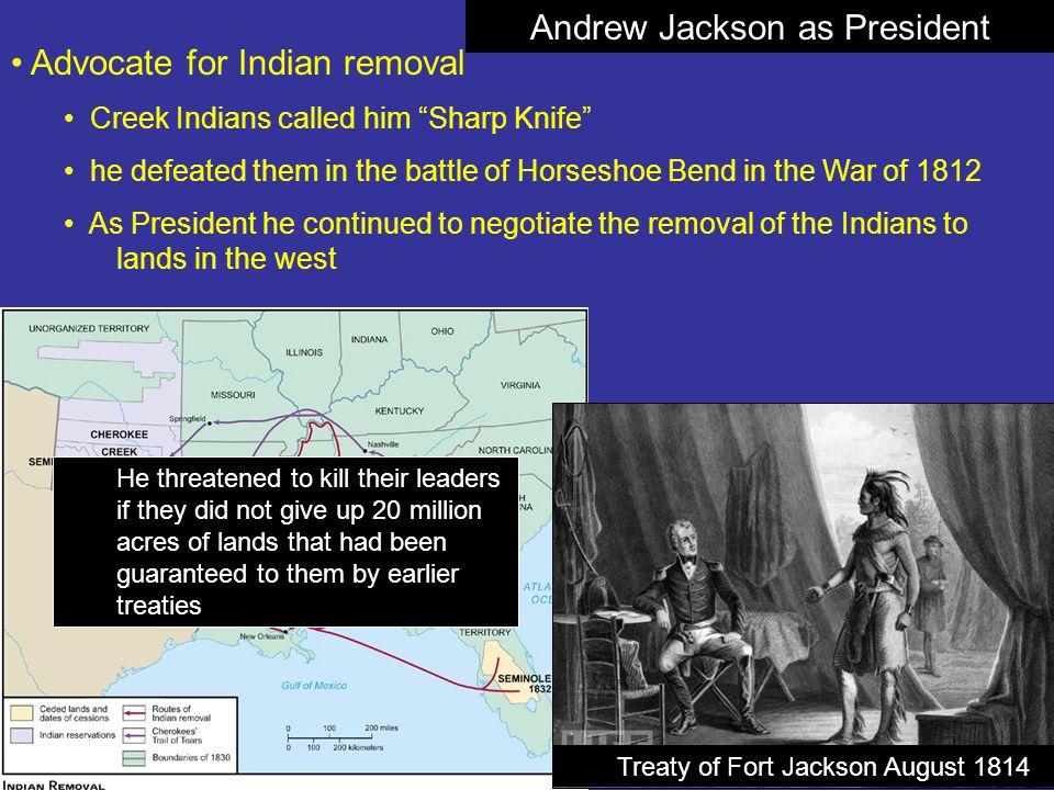 Andrew Jackson as President