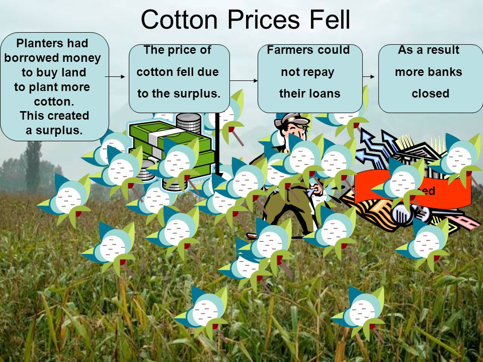Cotton Prices Fell Planters had borrowed money to buy land