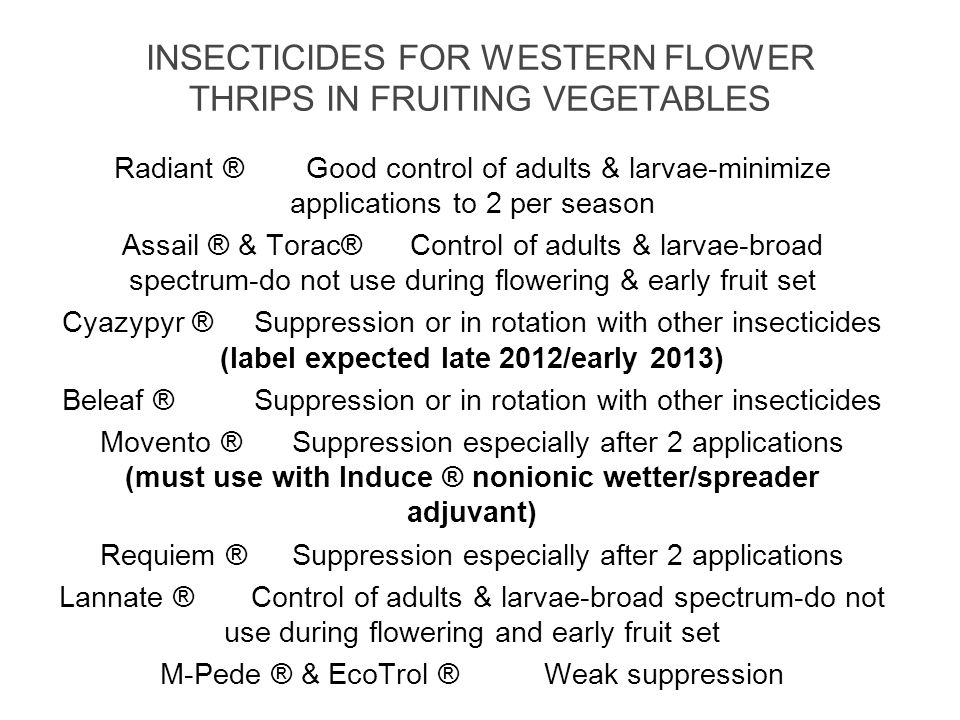 INSECTICIDES FOR WESTERN FLOWER THRIPS IN FRUITING VEGETABLES