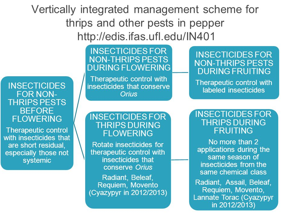 Vertically integrated management scheme for thrips and other pests in pepper http://edis.ifas.ufl.edu/IN401