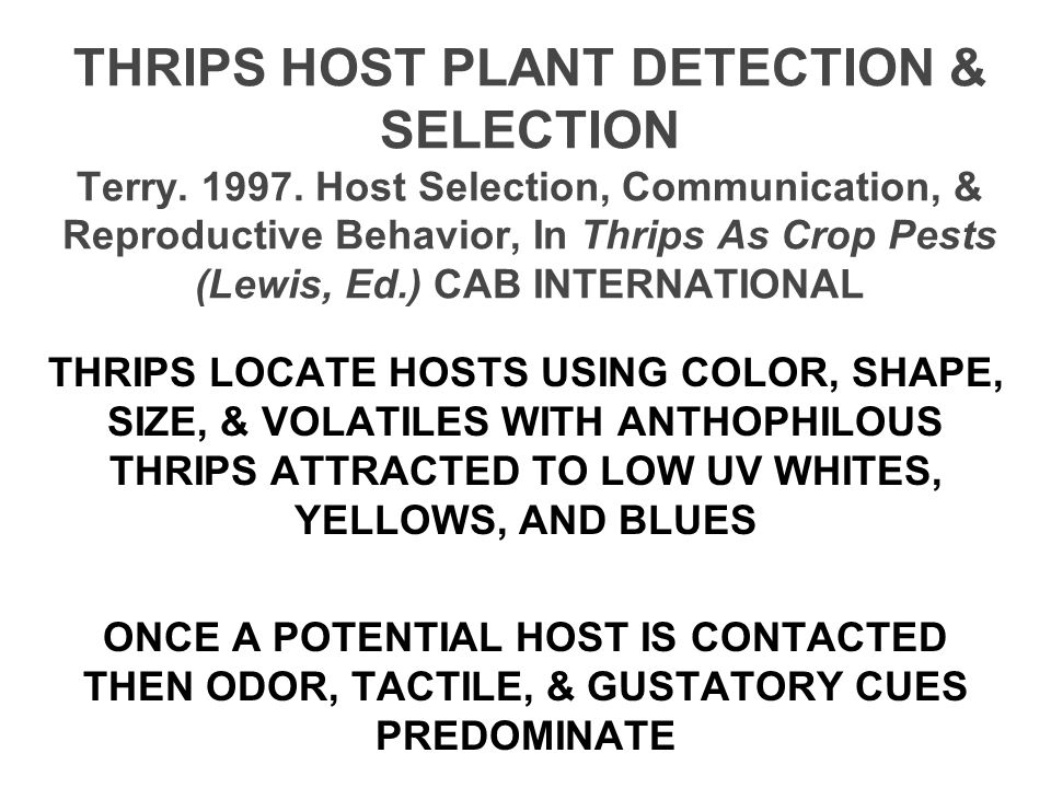 THRIPS HOST PLANT DETECTION & SELECTION Terry. 1997