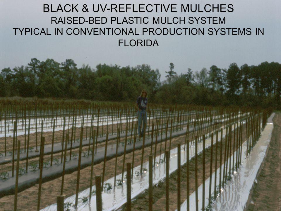 BLACK & UV-REFLECTIVE MULCHES