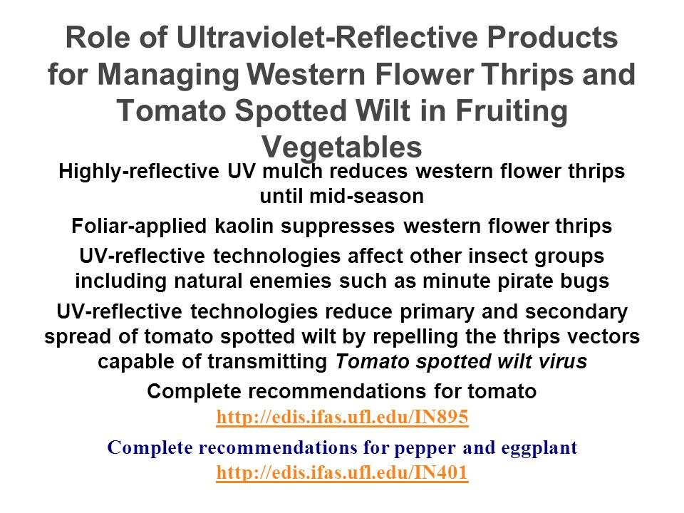 Role of Ultraviolet-Reflective Products for Managing Western Flower Thrips and Tomato Spotted Wilt in Fruiting Vegetables