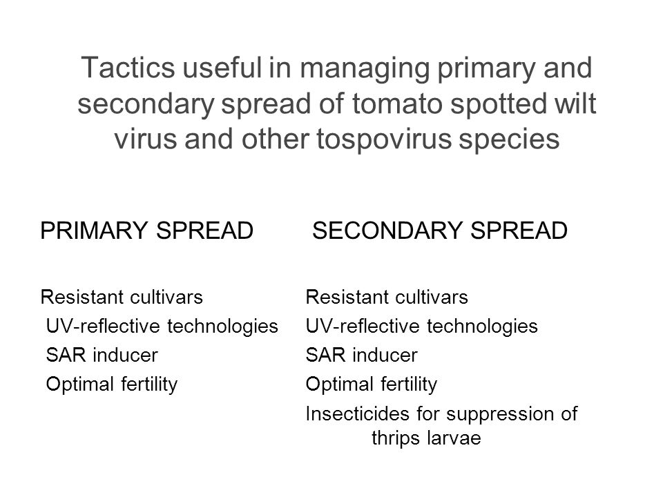 Tactics useful in managing primary and secondary spread of tomato spotted wilt virus and other tospovirus species