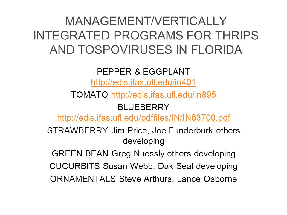 MANAGEMENT/VERTICALLY INTEGRATED PROGRAMS FOR THRIPS AND TOSPOVIRUSES IN FLORIDA