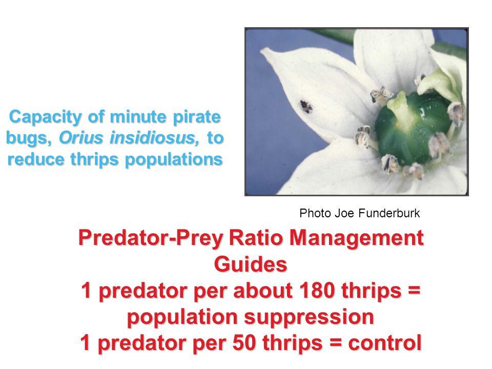 Predator-Prey Ratio Management Guides