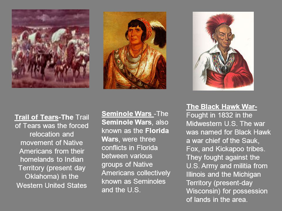 Trail of Tears-The Trail of Tears was the forced relocation and movement of Native Americans from their homelands to Indian Territory (present day Oklahoma) in the Western United States