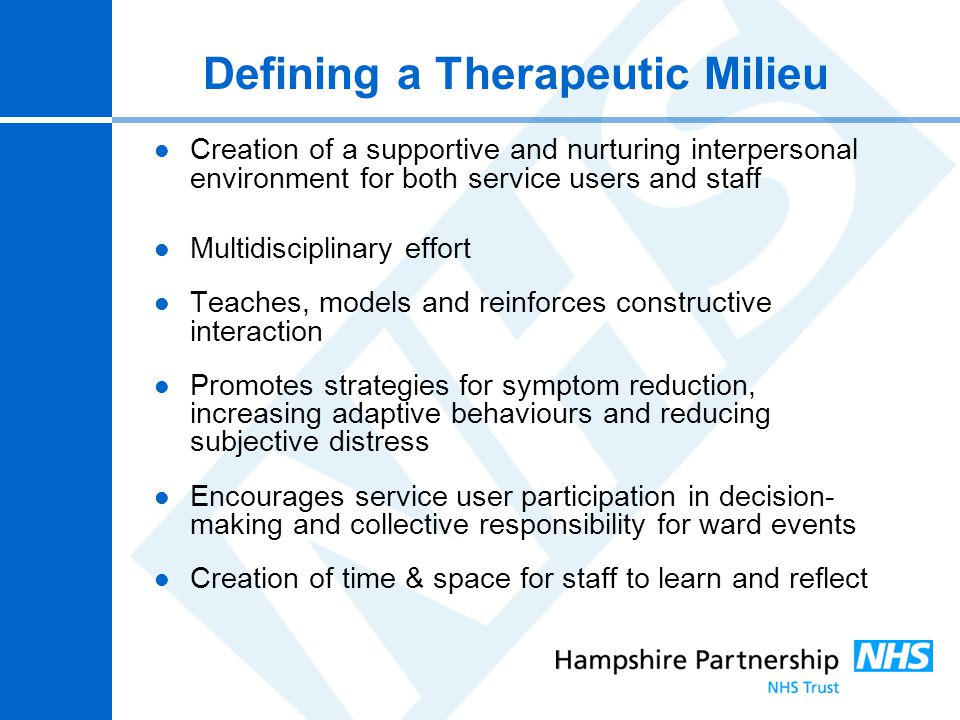 Defining a Therapeutic Milieu