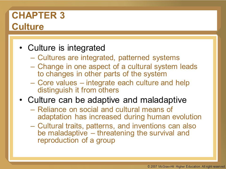 CHAPTER 3 Culture Culture is integrated