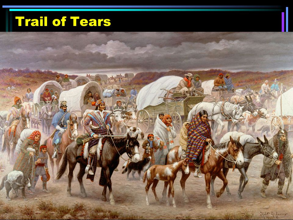 Andrew Jackson Trail Of Tears   www.imgkid.com - The Image ...