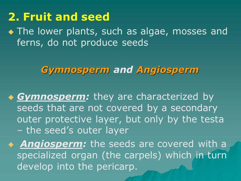 Gymnosperm and Angiosperm