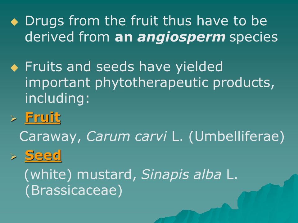 Drugs from the fruit thus have to be derived from an angiosperm species