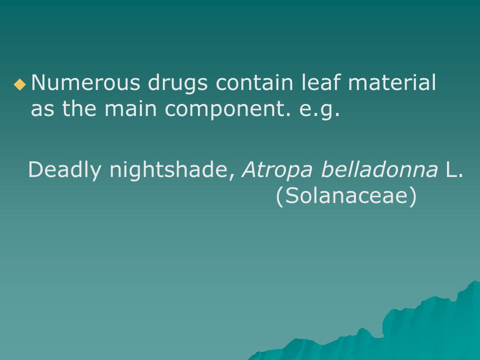 Numerous drugs contain leaf material as the main component. e.g.