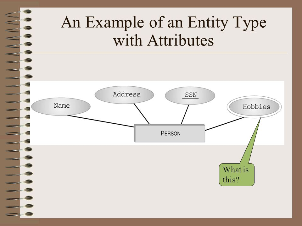 An Example of an Entity Type with Attributes
