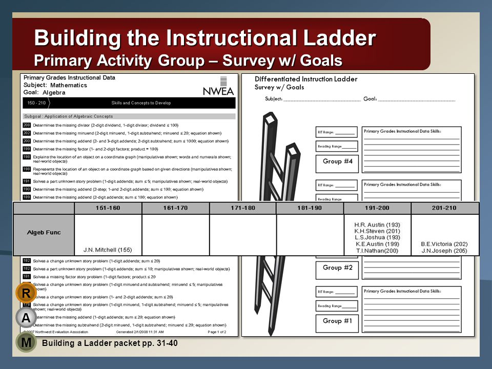 Building the Instructional Ladder Primary Activity Group – Survey w/ Goals