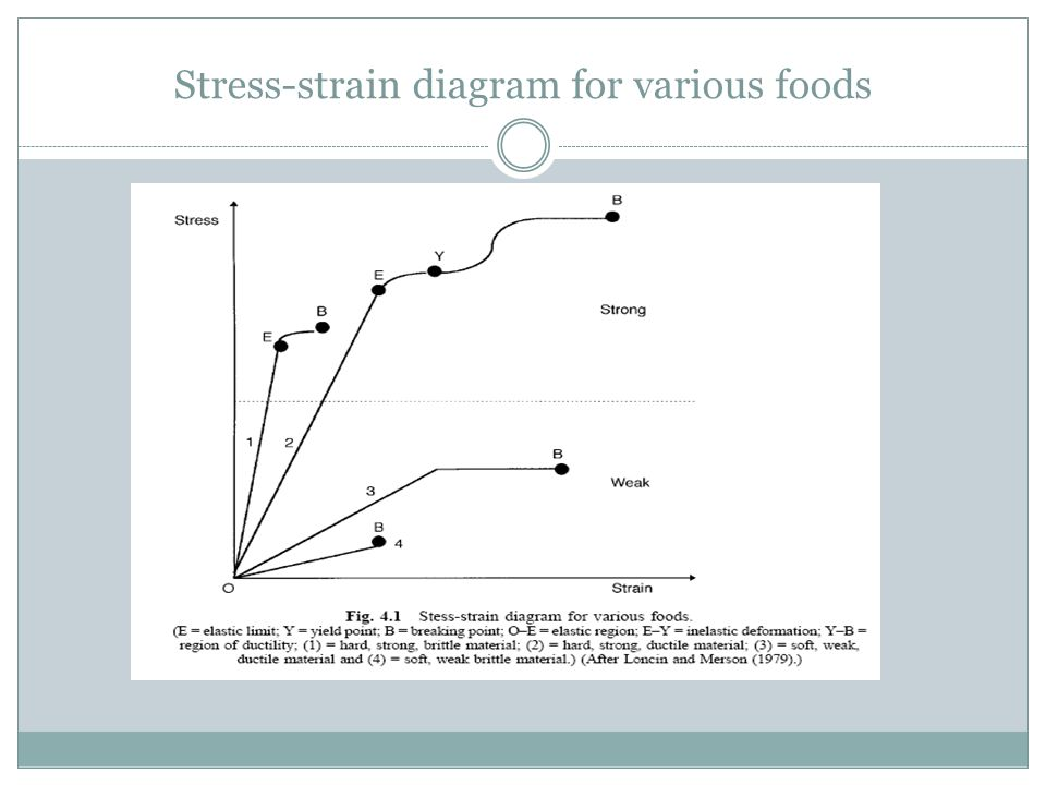 Stress-strain diagram for various foods