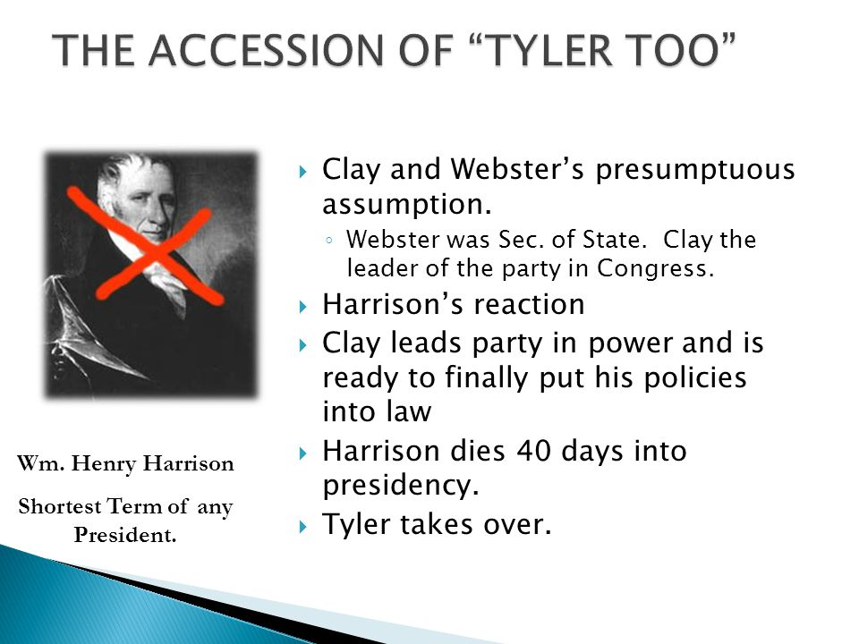 THE ACCESSION OF TYLER TOO