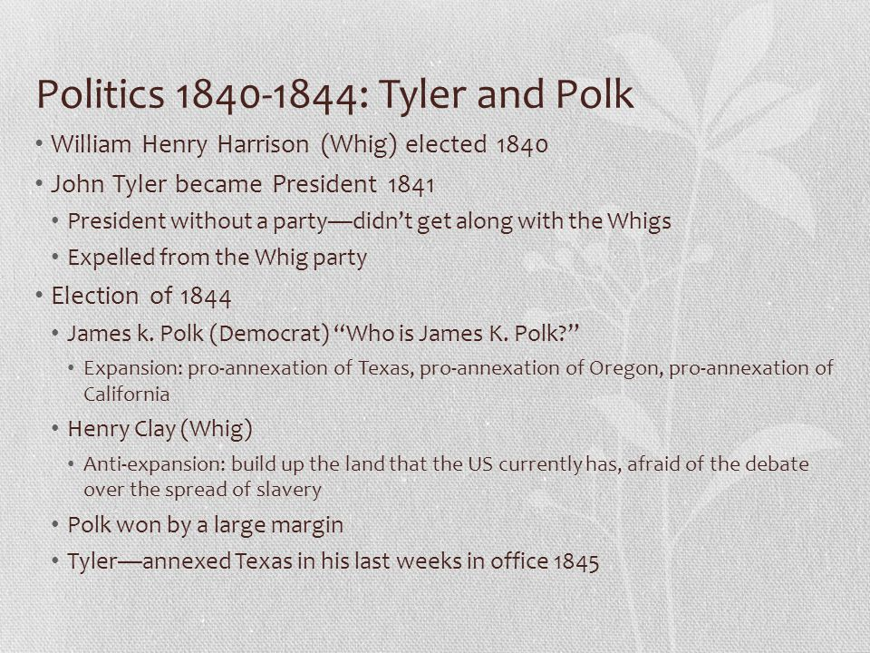 Politics 1840-1844: Tyler and Polk
