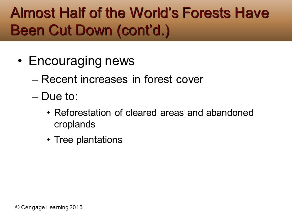 Almost Half of the World's Forests Have Been Cut Down (cont'd.)